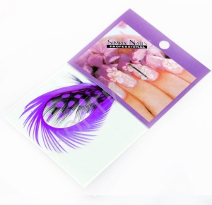 картинка Перья для дизайна ногтей 19 магазин Gumla.ru являющийся официальным дистрибьютором в России