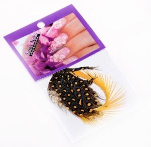 картинка Перья для дизайна ногтей12 магазин Gumla.ru являющийся официальным дистрибьютором в России