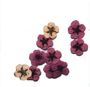 картинка Сухоцветы для дизайна 30 магазин Gumla.ru являющийся официальным дистрибьютором в России