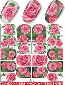 картинка Слайдер дизайн для ногтей 005 магазин Gumla.ru являющийся официальным дистрибьютором в России