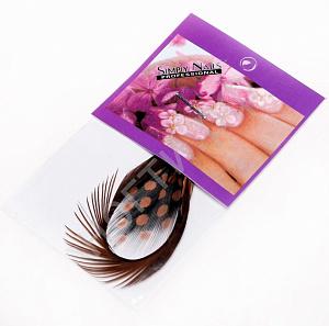 картинка Перья для дизайна ногтей 13 магазин Gumla.ru являющийся официальным дистрибьютором в России