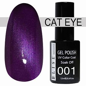 картинка Гель-лак BLISE CAT EYE 01 магазин Gumla.ru являющийся официальным дистрибьютором в России